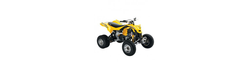Can Am ds 450 ds450