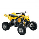 Can Am ds 450